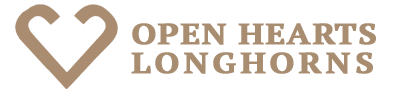 Open Hearts Longhorns logo